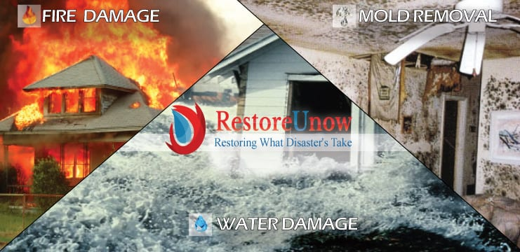 water damage Frederick md